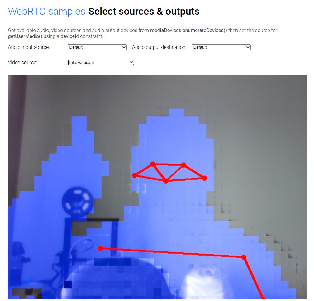 Anynomized Webcam :)