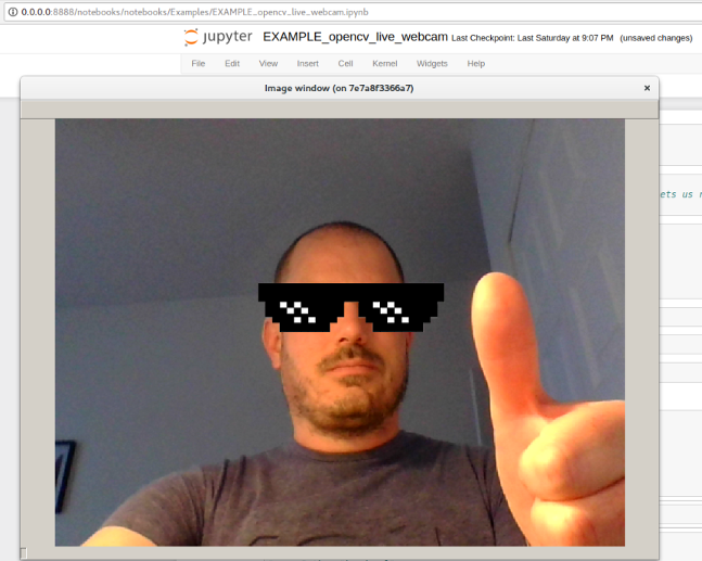 OpenCV capturing image directly from my webcam